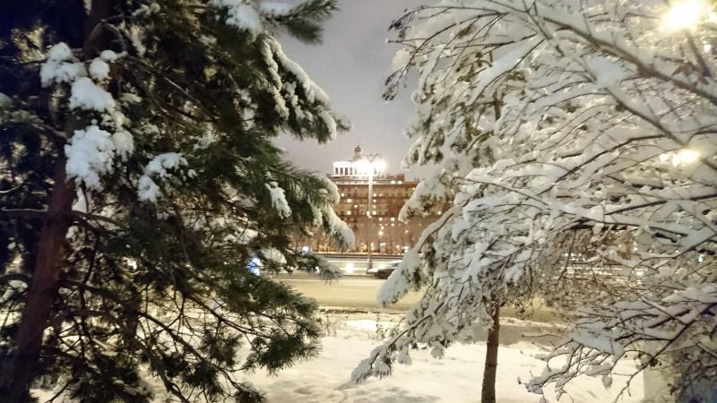 Снегопад 13 февраля 2019 25.jpg
