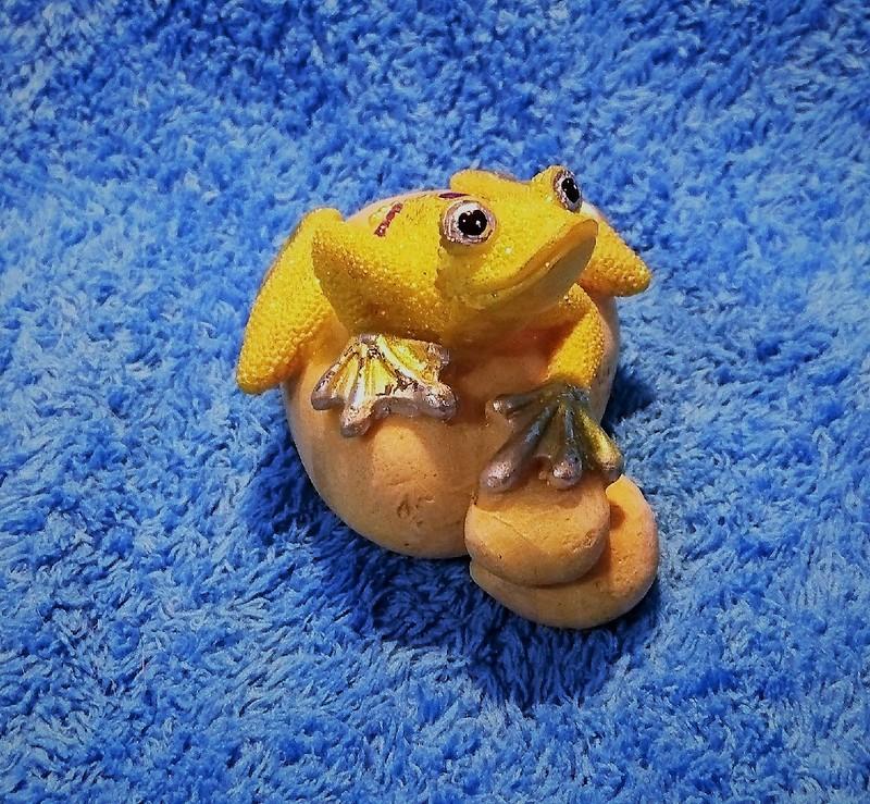 лягушки 24.jpg