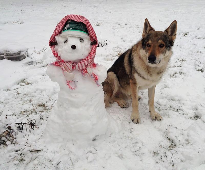 Снеговик 2.jpg