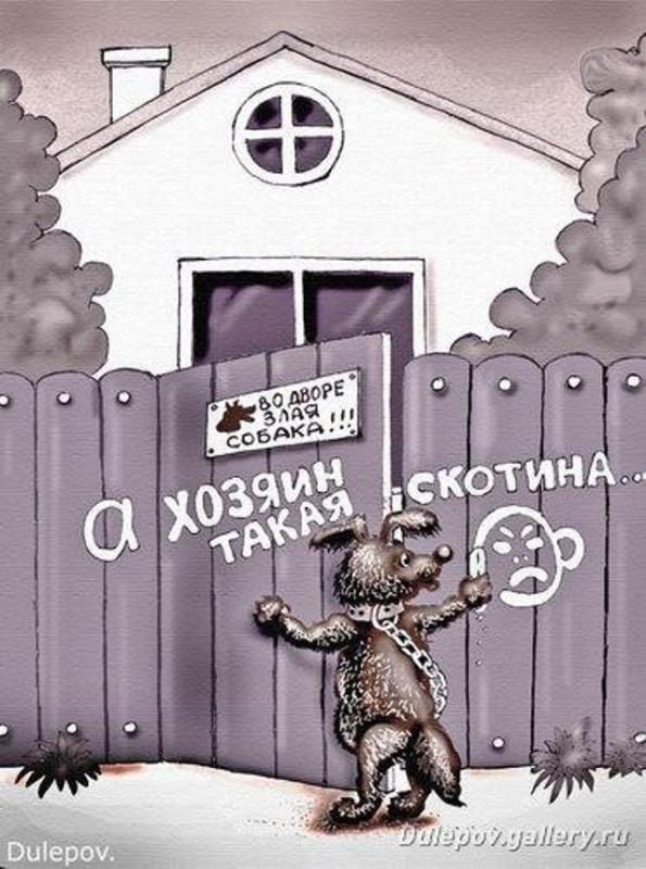 Карикатуры про собак 7.jpg