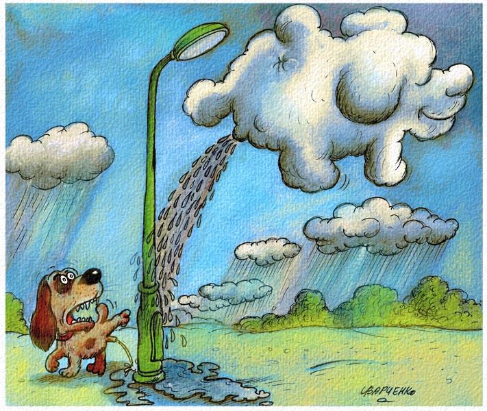 varchenko-cartoons-041.jpg