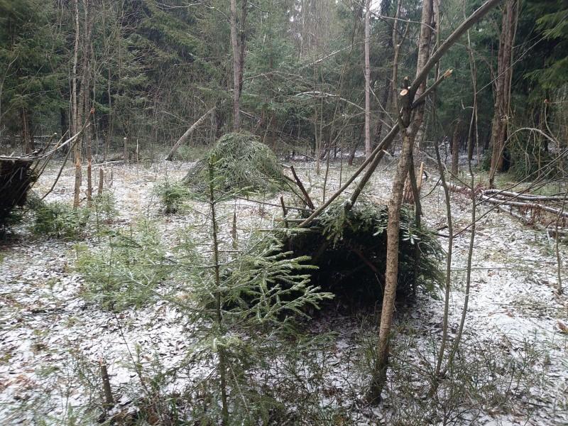 Лесной посёлок 30 марта 2020 3.jpg