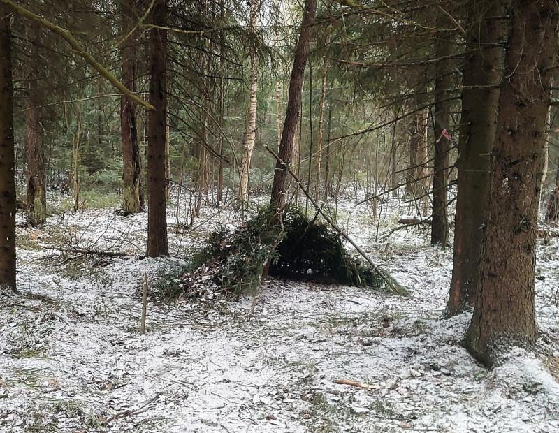 Лесной посёлок 30 марта 2020 4.jpg
