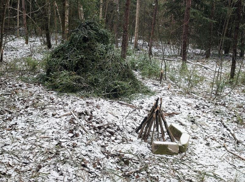 Лесной посёлок 30 марта 2020 5.jpg
