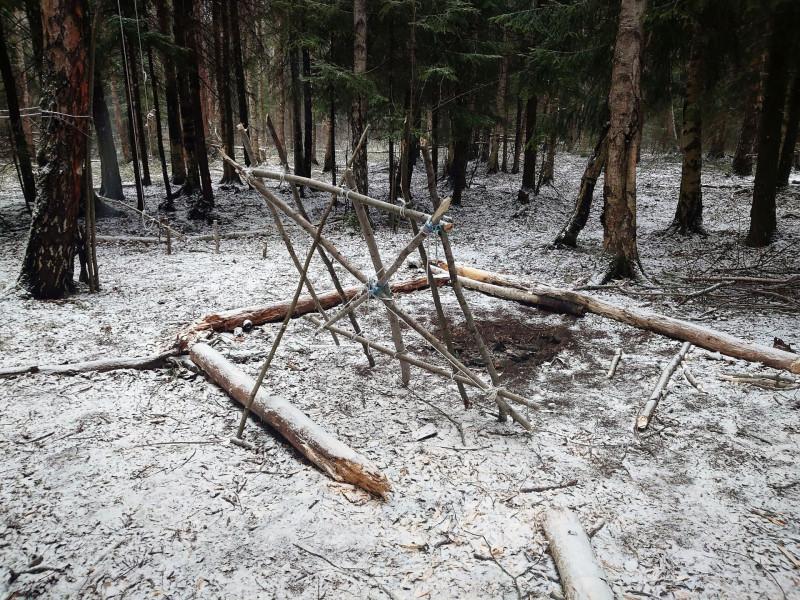 Лесной посёлок 30 марта 2020 14.jpg