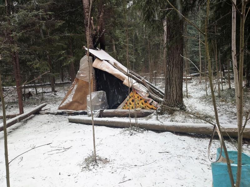 Лесной посёлок 30 марта 2020 17.jpg