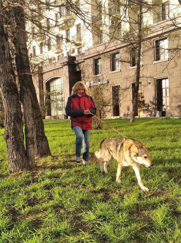 Ольга с Канисом у высотки 20 апреля 2020 6.jpg