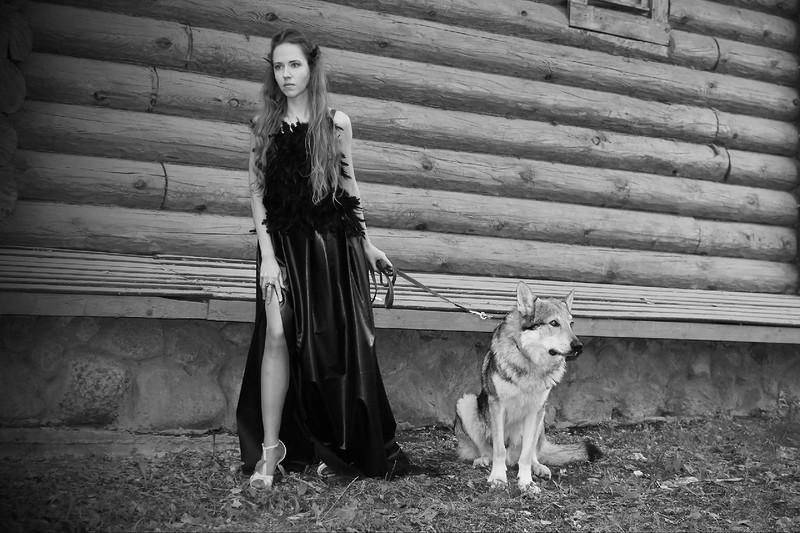 Канис в Изайлово 25 августа 2017 1 фотограф Екатерина 3.jpg