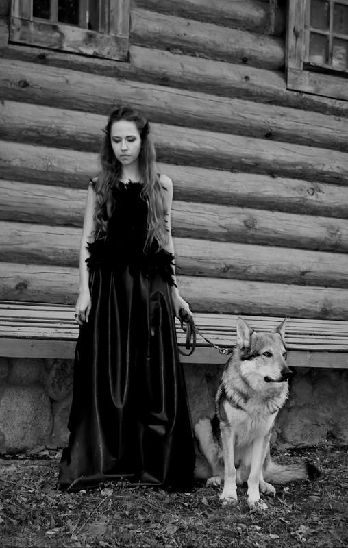 Канис в Изайлово 25 августа 2017 1 фотограф Екатерина 2.jpg