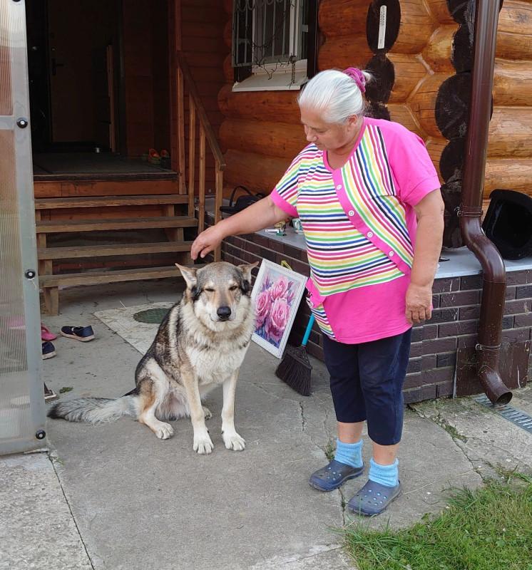Бабушка и серый волк 5 августа 2020 8.jpg