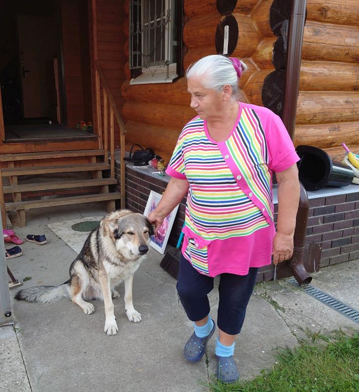 Бабушка и серый волк 5 августа 2020 11.jpg