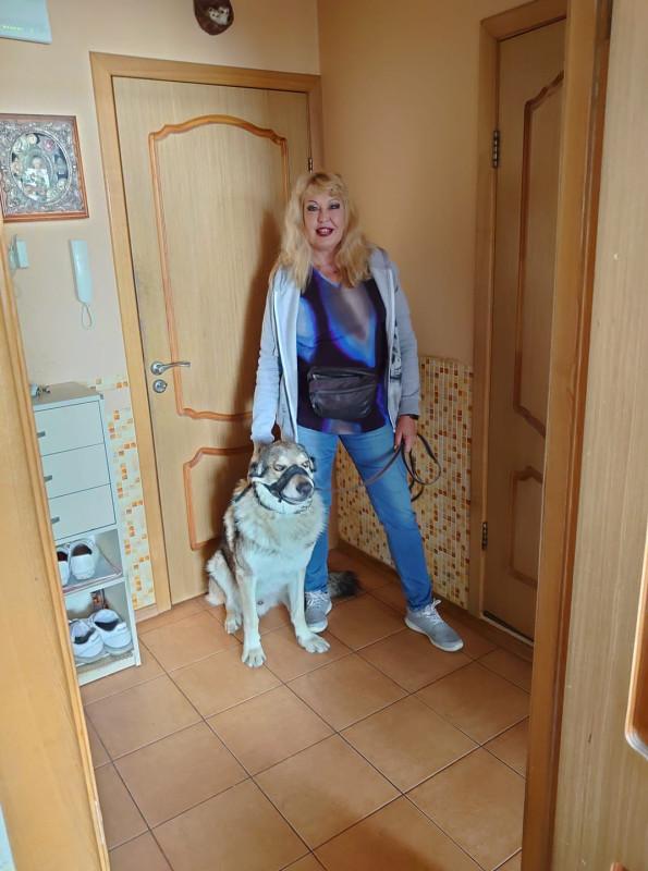 Хозяйка и Канис собираются на прогулку 8 сентября 2020.jpg