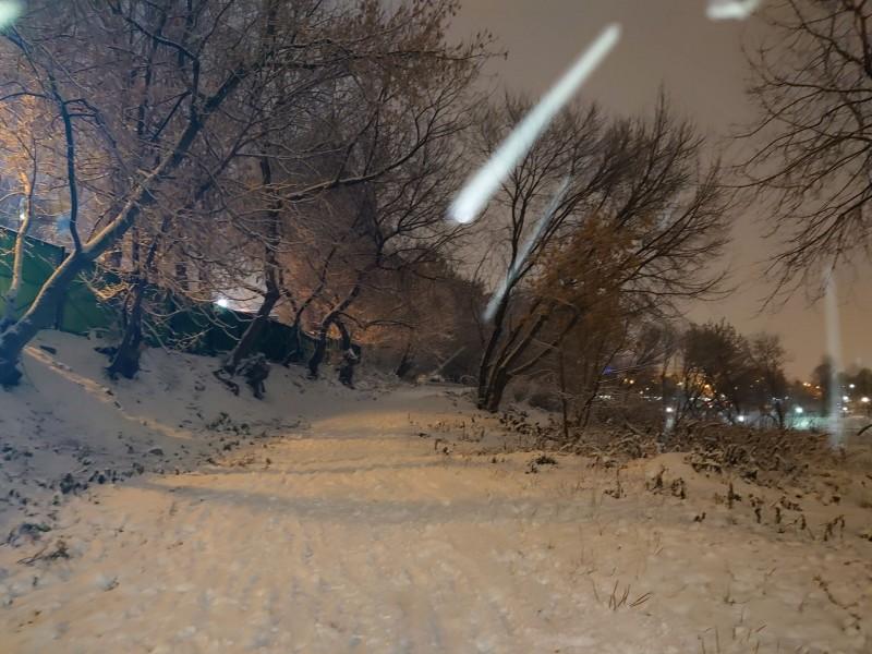 Новоспасский пруд 20 ноября 2020 1.jpg