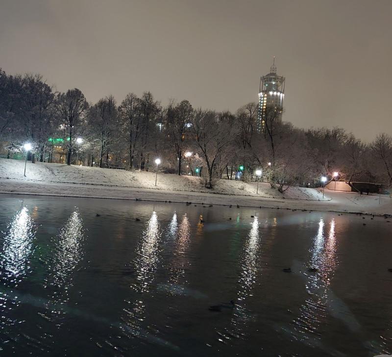 Новоспасский пруд 20 ноября 2020 3.jpg