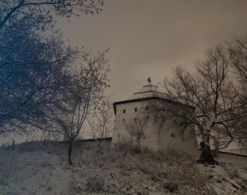 Новоспасский пруд 20 ноября 2020 6.jpg