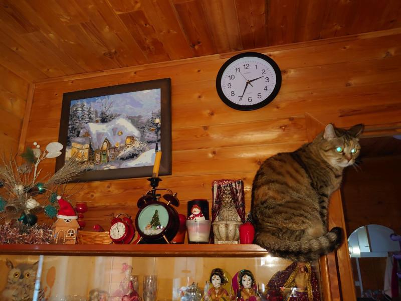 Джойка и часы 12 декабря 2020 3.jpg