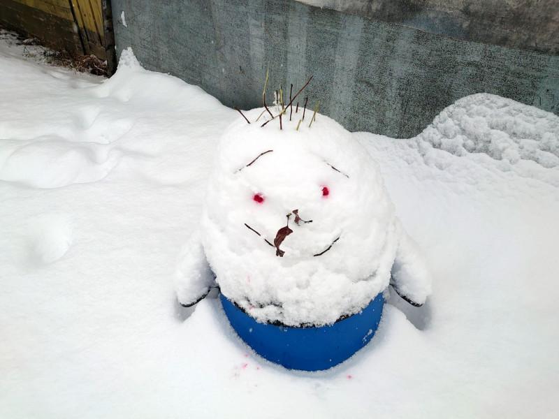 Снеговик 2 января 2021 1.jpg