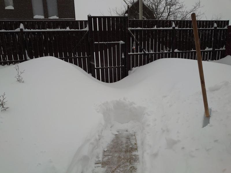 Снегопад 2.jpg