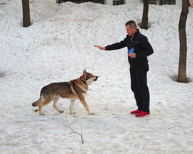 Андрей и Канис 20 марта 2021 4.jpg