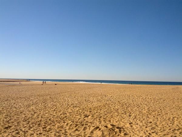 beach july 14