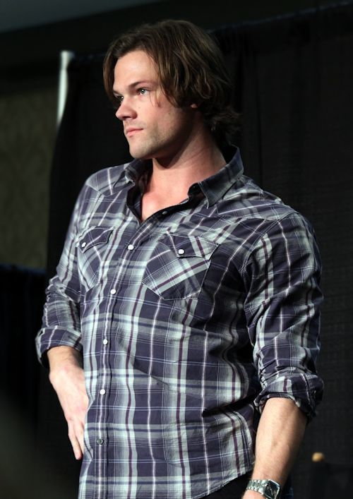 jared chicon 09 elsiecat sassy myed