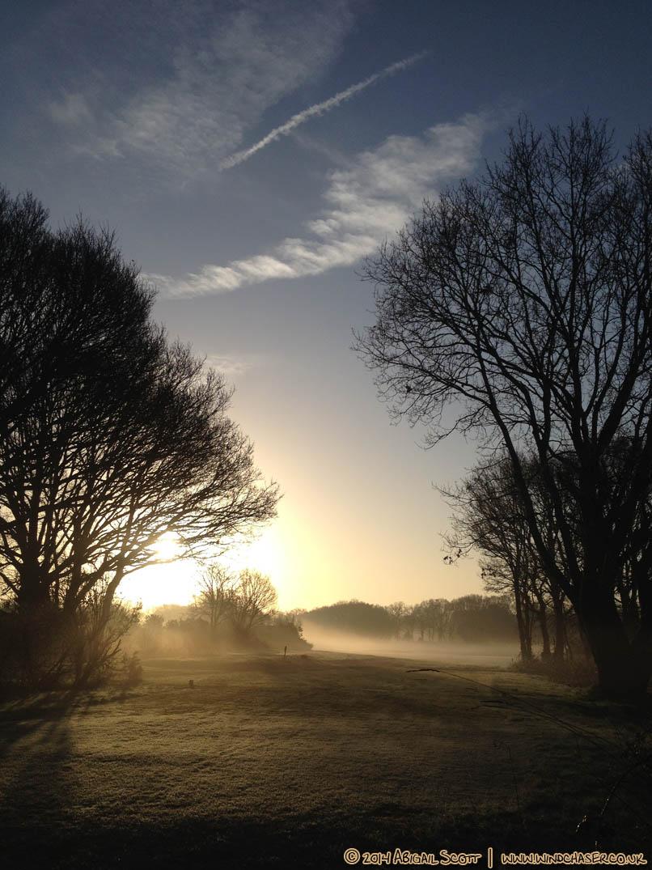 Misty Monday 5