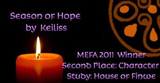MEFA banner