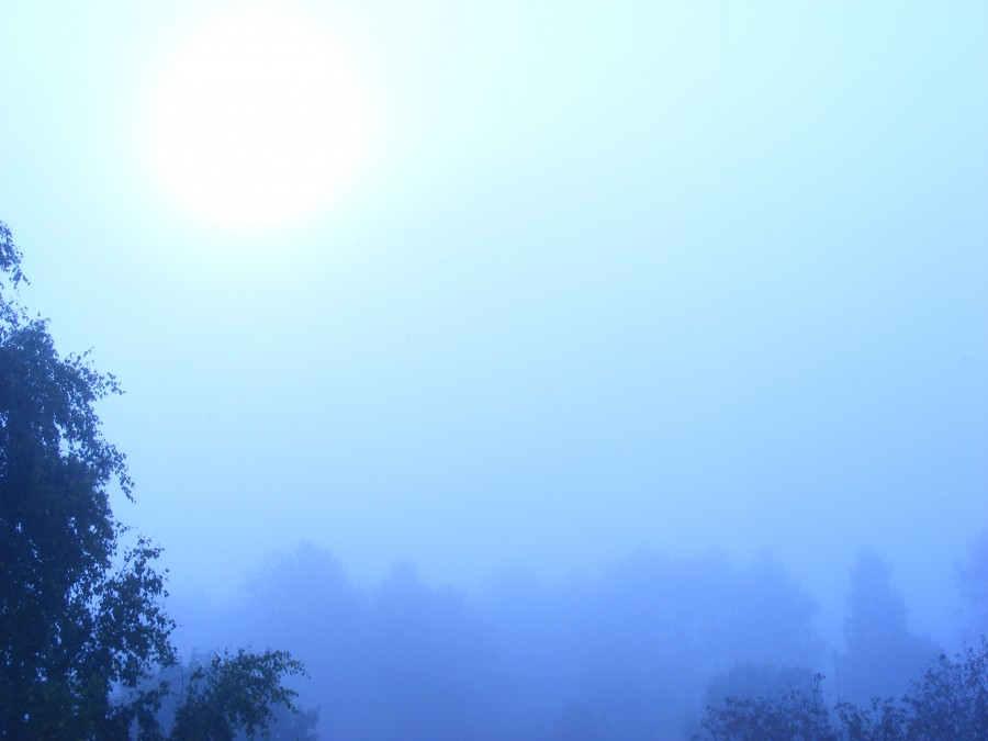 синее утро