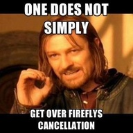 Fireflycancellationpic