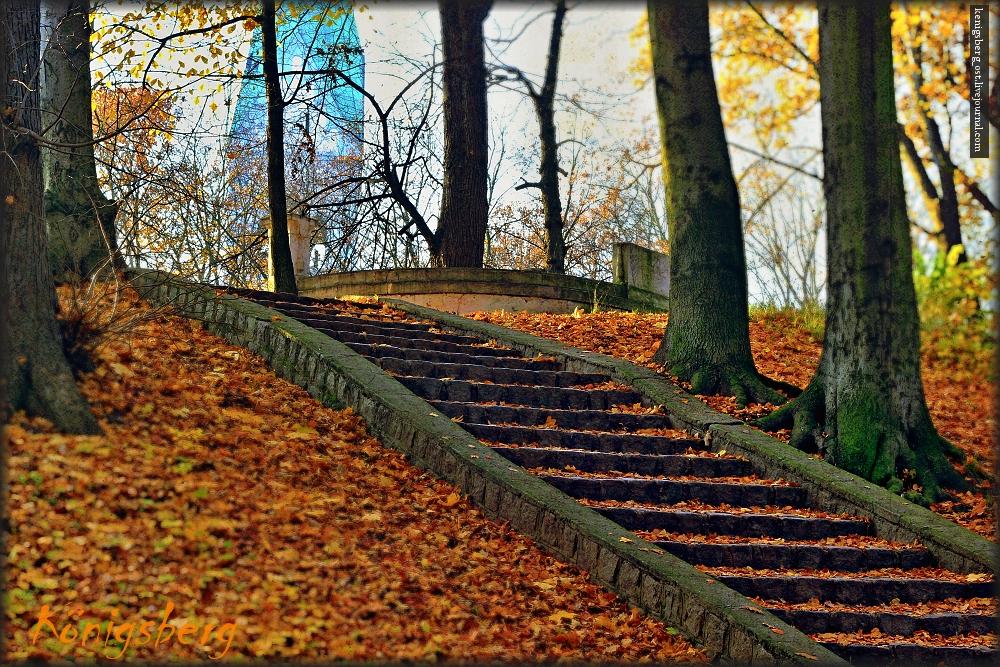 Park Luisen..
