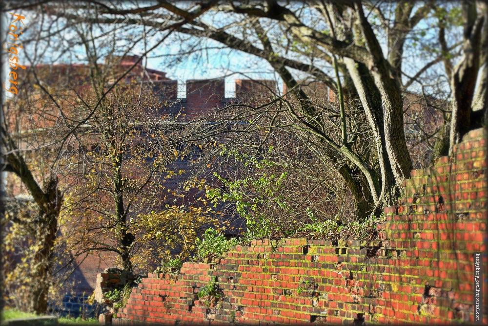Старые стены Кеника