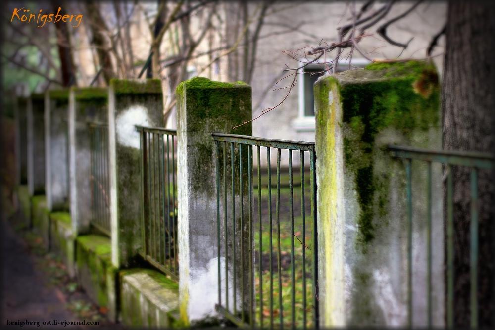 забор.....