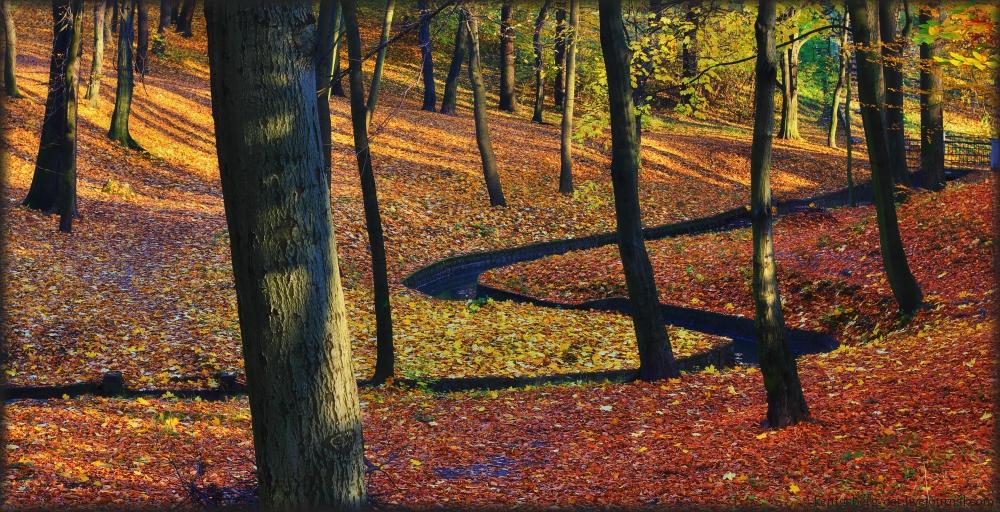 Park Luisen