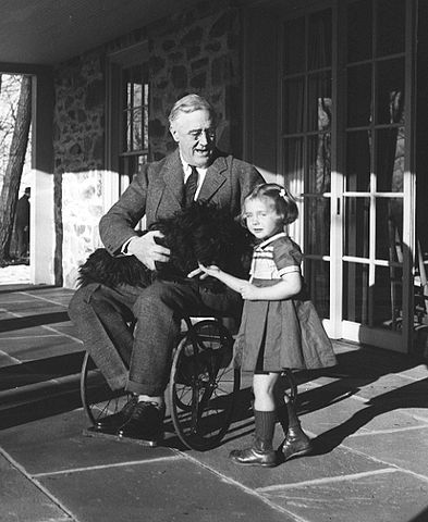 393px-Roosevelt_in_a_wheelchair.jpg