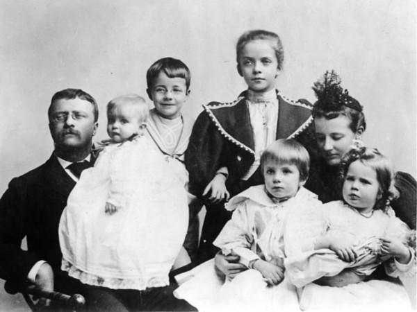 TR family p8
