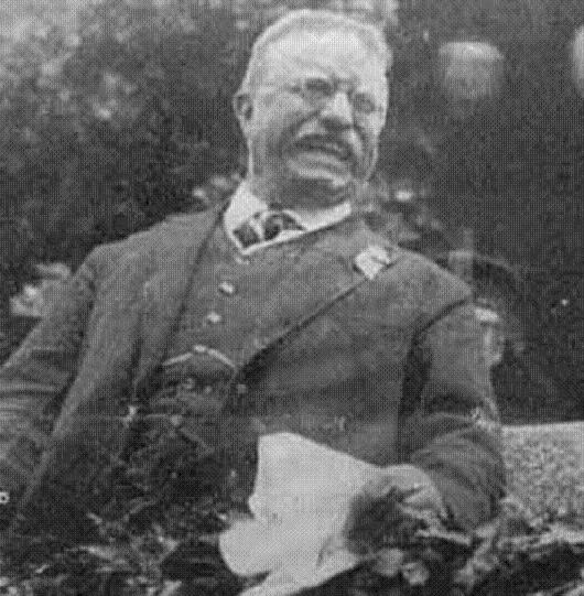 life of theodore roosevelt as a father husband and the 26th president of the united states The process by which a spindly, ailing boy grew into this man is one of the   morris in his fine biography ''the rise of theodore roosevelt  to his frail son  he was godlike: tr would later write that his father had been ''the best man i   but we want the details - for david mccullough has made us care.