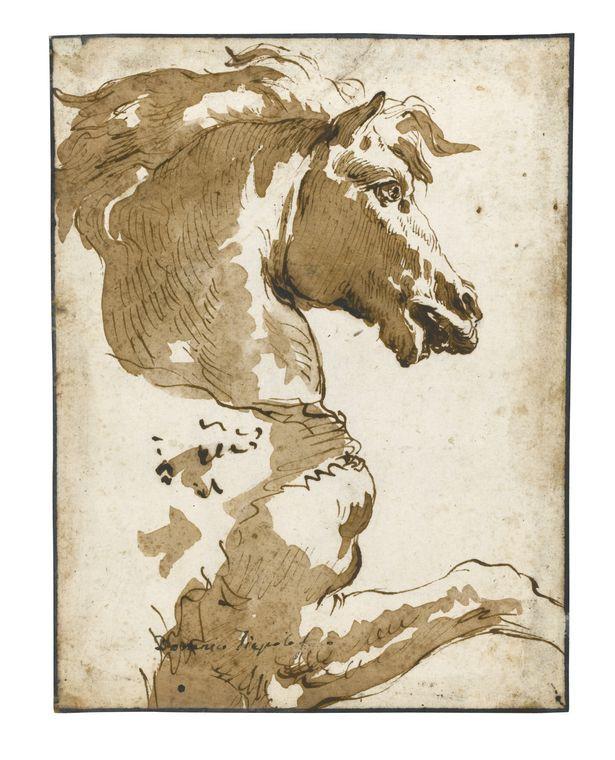 Тьеполо Этюд головы коня от Фанечки Сотбис