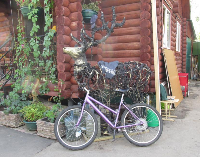 IMG_2022 велокент