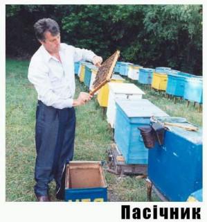 За пчел - ответишь