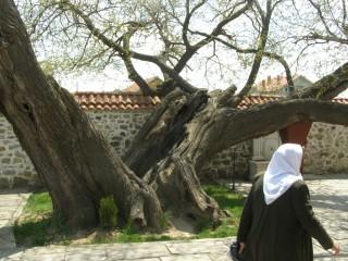 У могилы султана Мурада