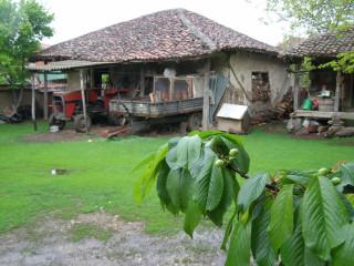 Старый двор в Грачанице