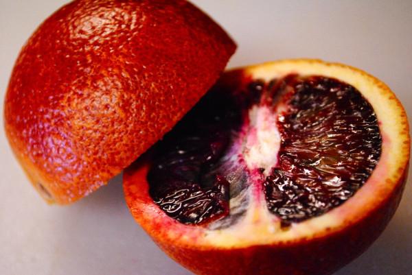 809086__sicilian-red-orange_p