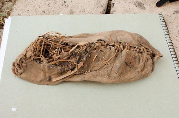 oldest-shoe