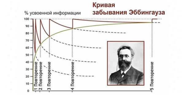 Картинки по запросу кривая эббингауза