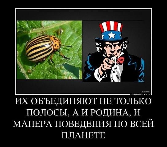 http://ic.pics.livejournal.com/kgb_ru/59180246/24500/24500_original.jpg