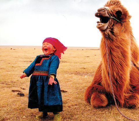 happy-baby-mongolian-n-camel