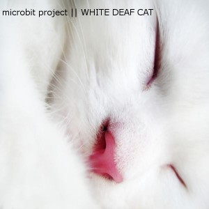 Cover_WhiteDeafCat