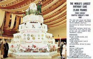 World's Largest Birthday Cake