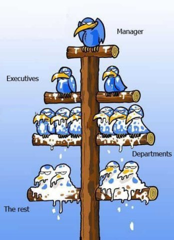 Organization of the workplace