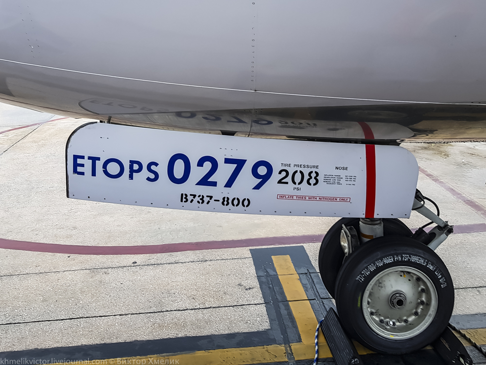 United-24.jpg